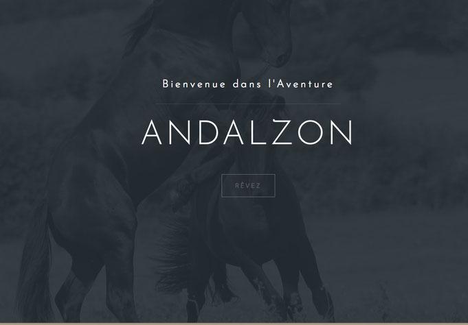 Haras de Val Castel Chevaux Frison Andalzon Dressage Attelage Spectacle Equitation Loisirs