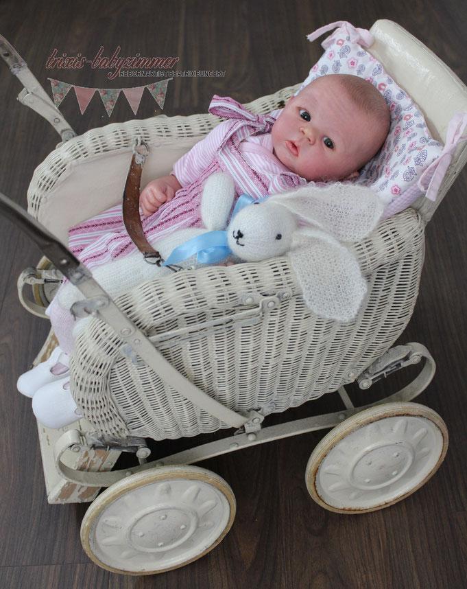 Rebornbaby Bailey