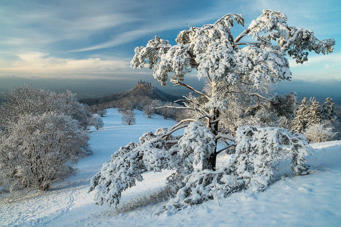 Wintertraum in der Nähe des Zollers.