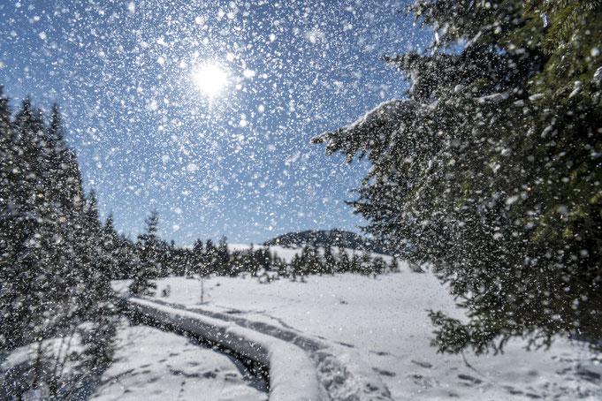 Aufgabe 1: Glitzern des Schnees
