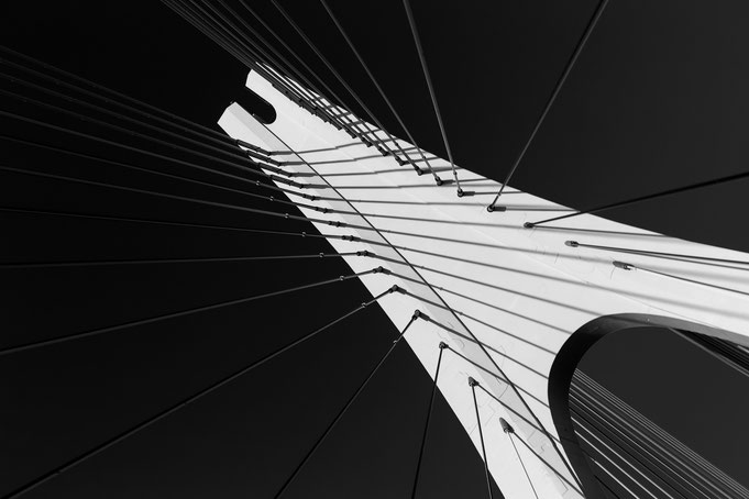 Conny - Foto 2 - The Bridge