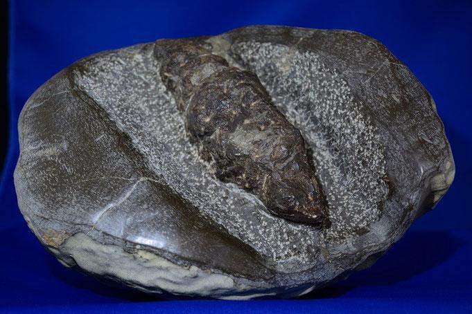 購入した石ですが,探す労力とクリーニングの手間を考えると買ってしまいました。