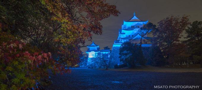 Dia Mundial da Diabete - 14 de novembro - Castelo de Iga