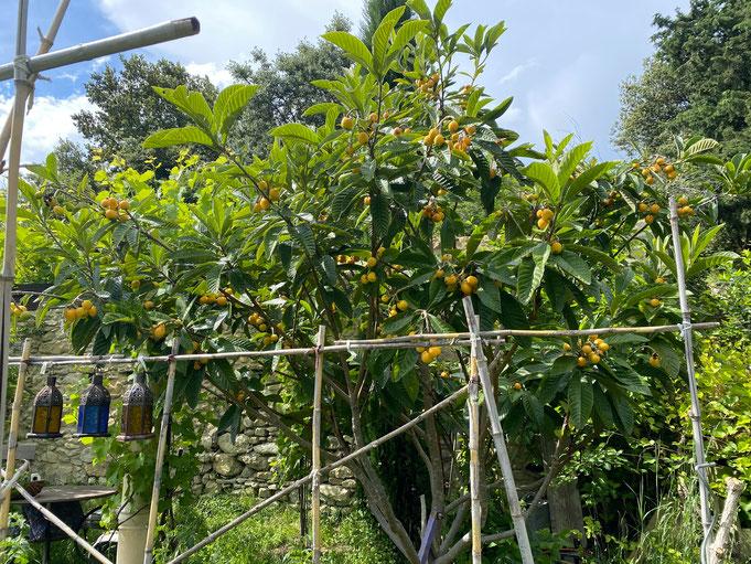 Nachtaufnahmen Martina Lahaye