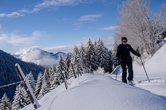 Ski de randonnée, balades en raquettes , ski alpin, ski nordique, aux portes de notre location.