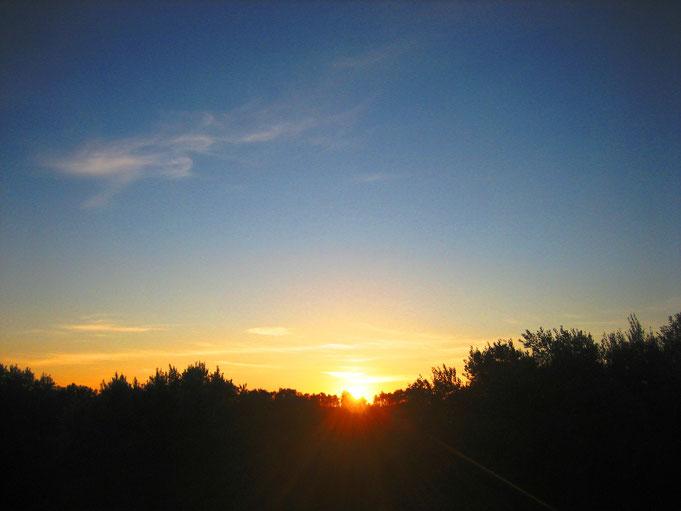 Blick von der Dachterrasse / Sonnenuntergang