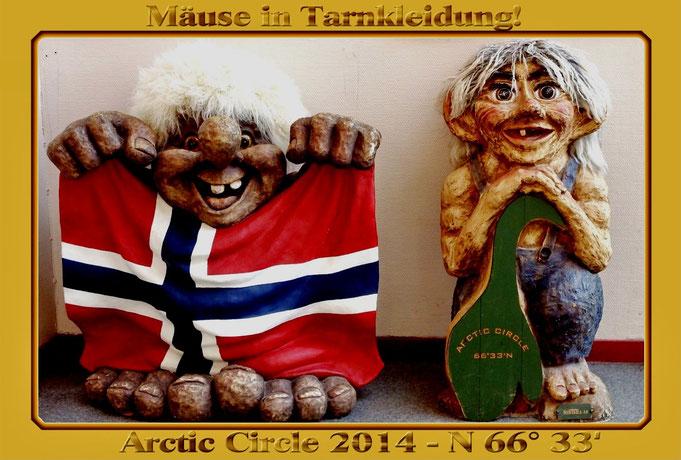 Trollige Grüße von den Mäusen aus Norwegen...! Trotz Tarnung nicht verändert???