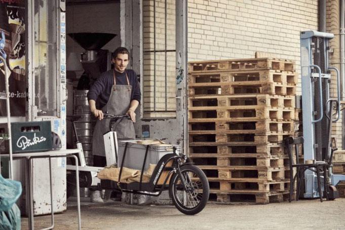 Bergamont 2020 E-bike