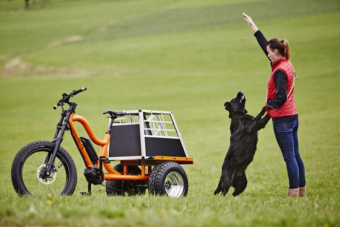 електрическа триколка, карго електрическо колело