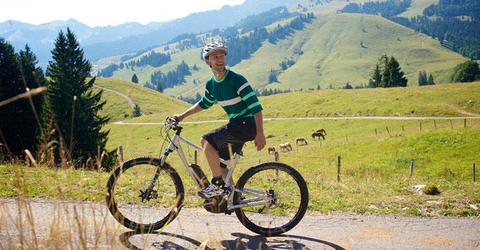 Електрическо колело, велосипед, предимства