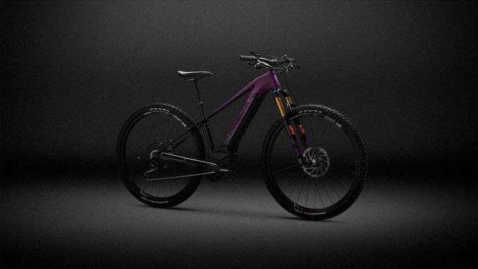 електрически велосипед , интегрирана батерия