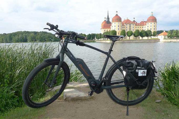 електрически велосипед Diamant Zouma