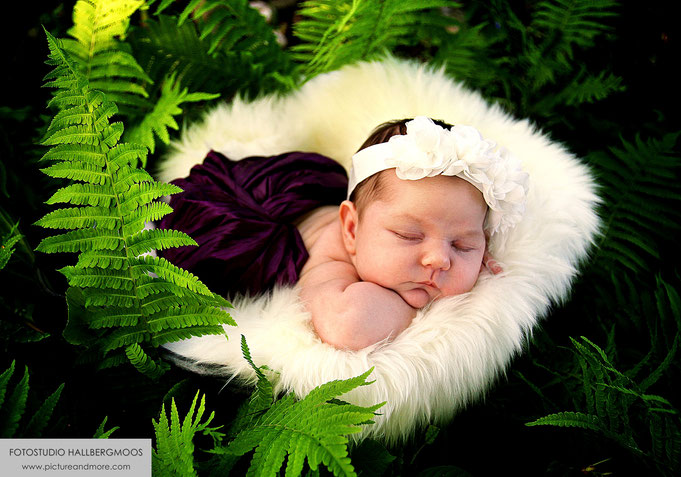 Fotostudio Hallbergmoos Iris Besemer www.pictureandmore.com