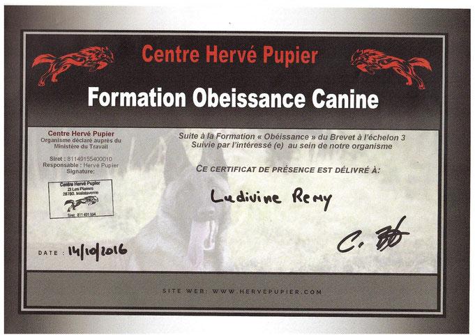 """Octobre 2016 : Formation """"Obéissance canine"""" (Carmen Benett et Christelle Florenson) au centre Hervé Pupier"""
