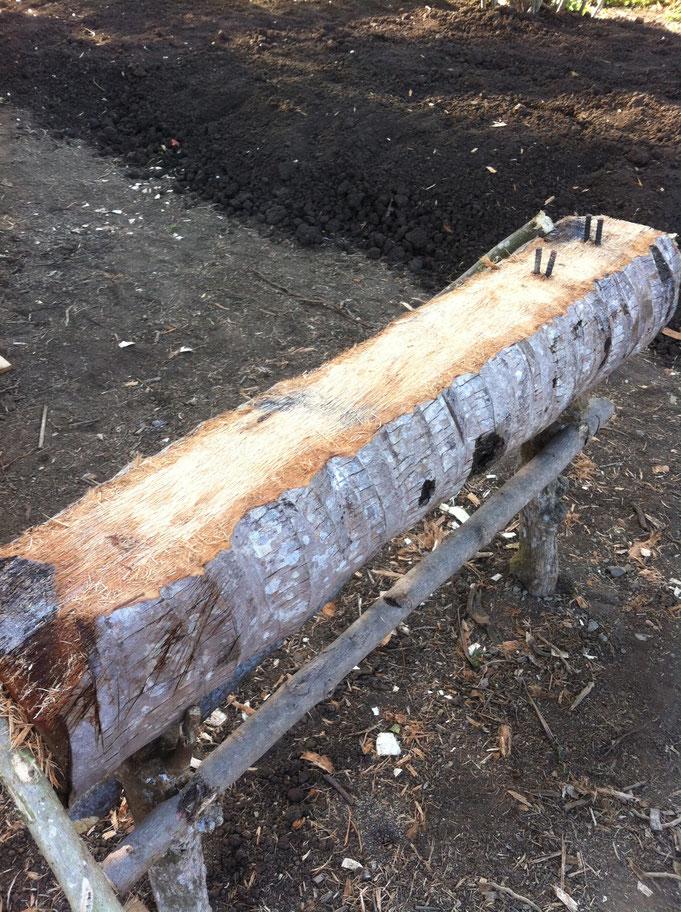 Baum umfunktioniert als Eisenbiege Tisch
