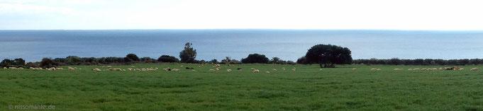 Irische Landschaft?