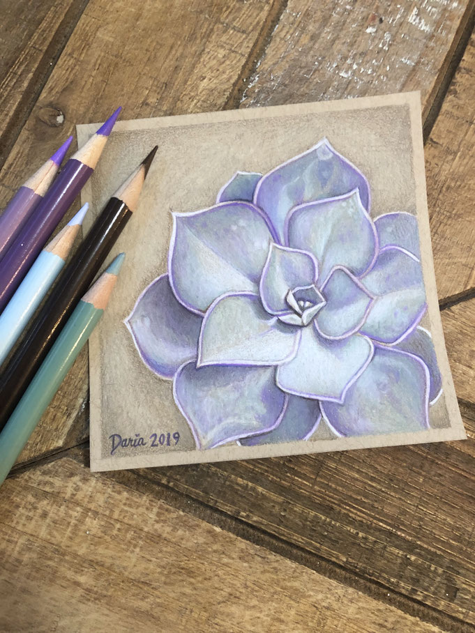 Purple Succulent: colored pencil drawing, March 2019