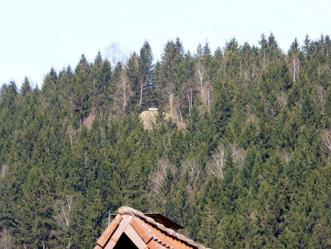 Der Bielstein von Lautenthal, die entscheidende Sicht hhhat man nur von dieser Bank!