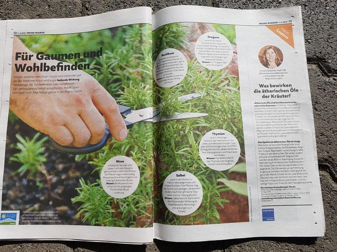 Aufmerksame Migros Magazin Leser der Regionalausgabe Zentralschweiz konnten folgenden Artikel entdecken ...
