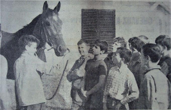 La dure école des apprentis-jockeys dans les années 70
