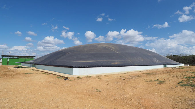 Covered lagoon digester -Slaughterhouse
