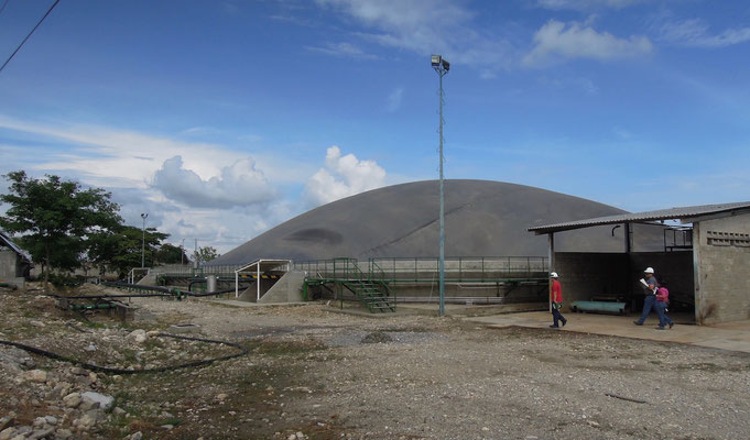 Covered lagoon digester for slaughterhouse wastewater - cattle