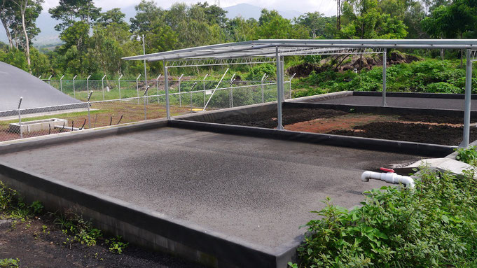 Covered lagoon digester for wastewater dairy industry