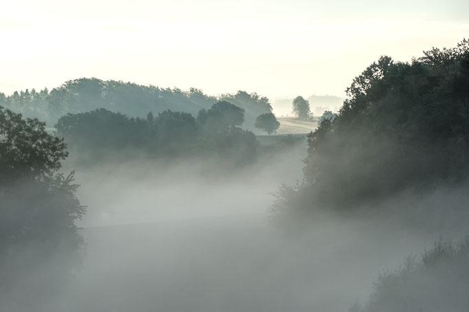 Nebel auf Hohensonne