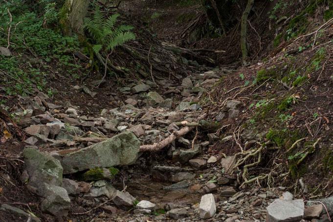 Fast trocken ist der Bachlauf strotz starker Regenschauer vor ein paar Tagen.