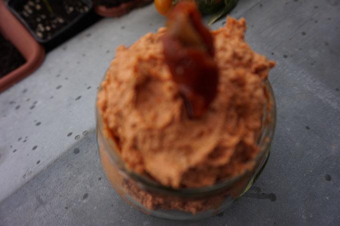 pikanter Frischkase Dip für Gemuese mit Tomaten