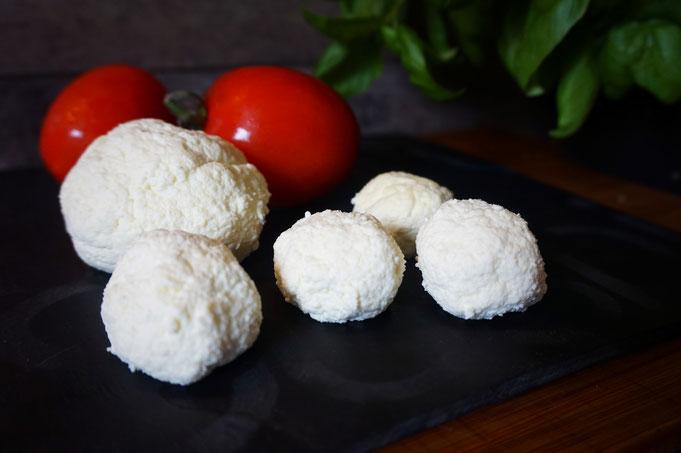 selbstgemachte Mozzarella aus nur 3 Zutaten in Olivenoel