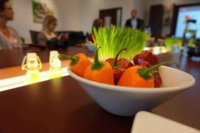 Alles Tomate Kresse und Vla oder was?|Bloggerreise in Holland