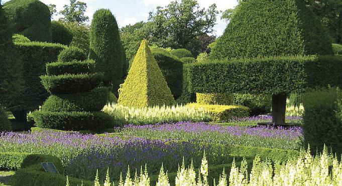 Мастерство садовников и ландшафтных дизайнеров