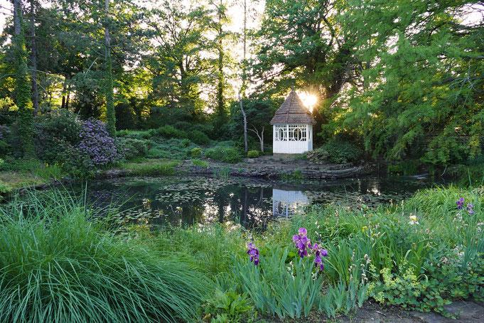 Teich im Botanischen Garten in Herzberg