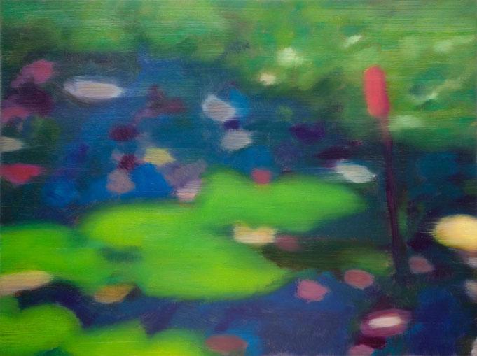HUILE photographique - 30 x 40 - 2011 - Cette huile n'est plus disponible