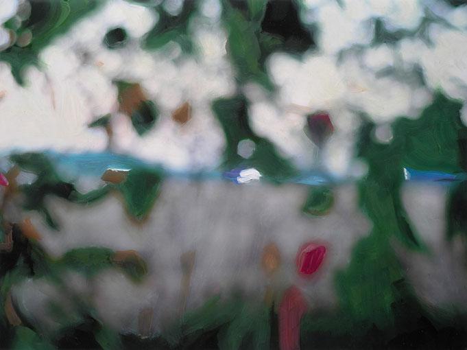 HUILE photographique - 30 x 40 - 40 x 50 encadrée - DISPO