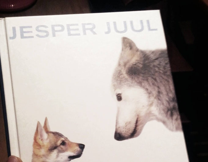 Erziehungskonzepte Beispiel Jesper Juul