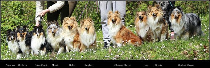 Victoire et les blondes Héra _ Odyssée - Jinx, Alexandre et Nouchka - Myyrhyyn, Hélène et Maiko