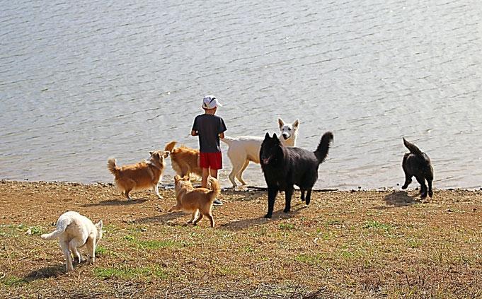 Walk on the Carla Bayle lake