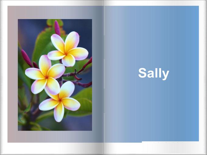 Boek - Sally
