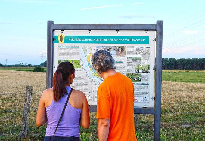 Sommerliche Besucher orientieren sich an der Übersichtskarte Naturschutzgebiet Haseldorfer Binnenelbe mit Elbvorland