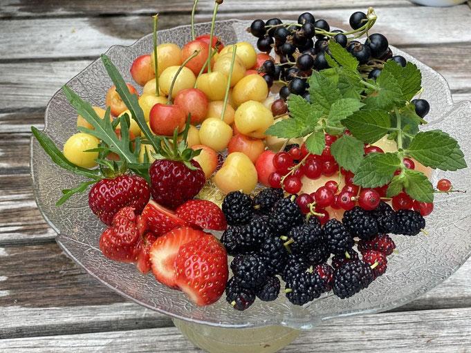 Dieses Gartenjahr wird fruchtig, lecker und abwechslungsreich. Foto: Petra Schweim #Appelbarg