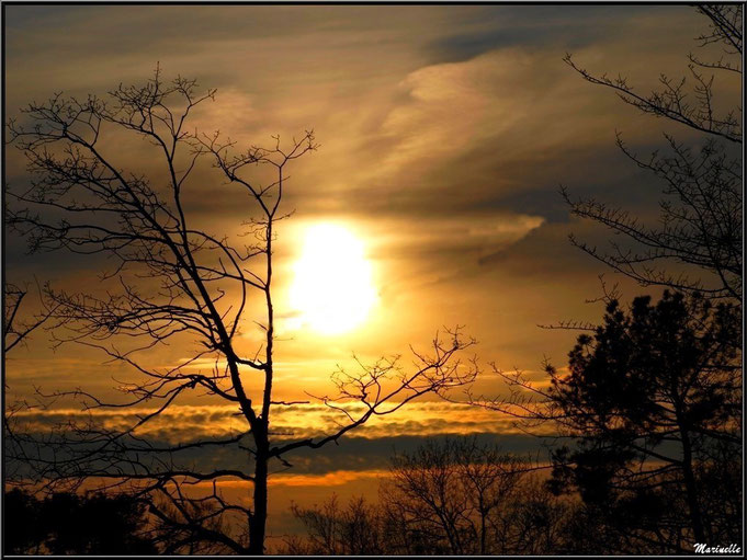 Coucher de soleil  hivernal entre mer et forêt sur le Bassin d'Arcachon (33)