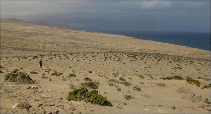 Bei einem Longrun im Urlaub auf Fuerteventura.