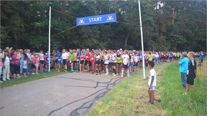 Kurz vor dem Halbmarathon-Start. Bildquelle: Altmühlseelauf Unterwurmbach (Facebookseite)