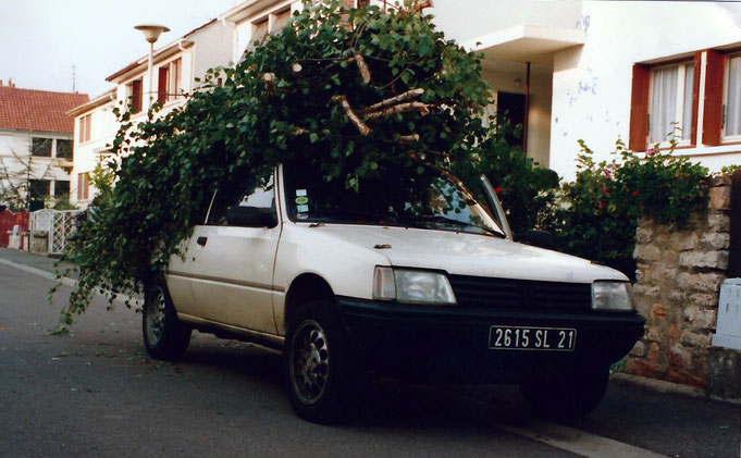 peugeot 205 camouflage végétaux 4x4