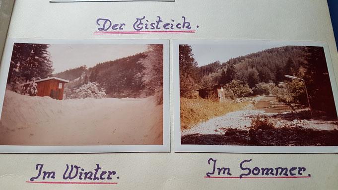 Unser alter Eisteich Winter und Sommer (1973) nach Unwetter