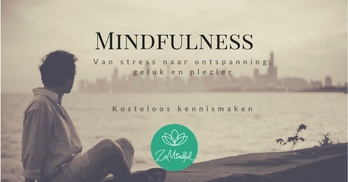 Online mindfulness training in een groep of individueel