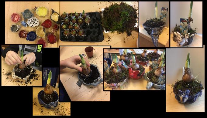 wir bepflanzten unsere Pflanzenschalen