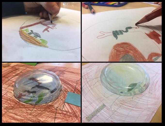 Aquarium und Terrariumbilder
